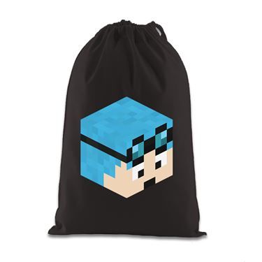 Picture of Dantdm Dan The Diamond Minecart Blue Hair Player Skin 3D Head Right Pose Gift Bag